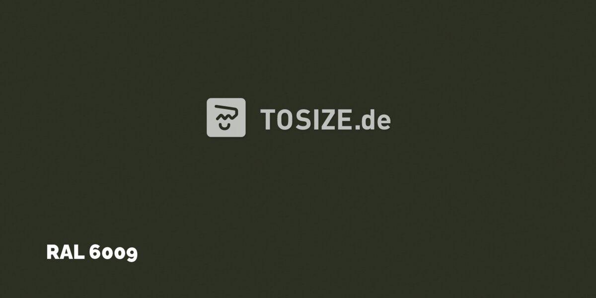 Trespa Izeon Tannengrün 6mm (1 seite)